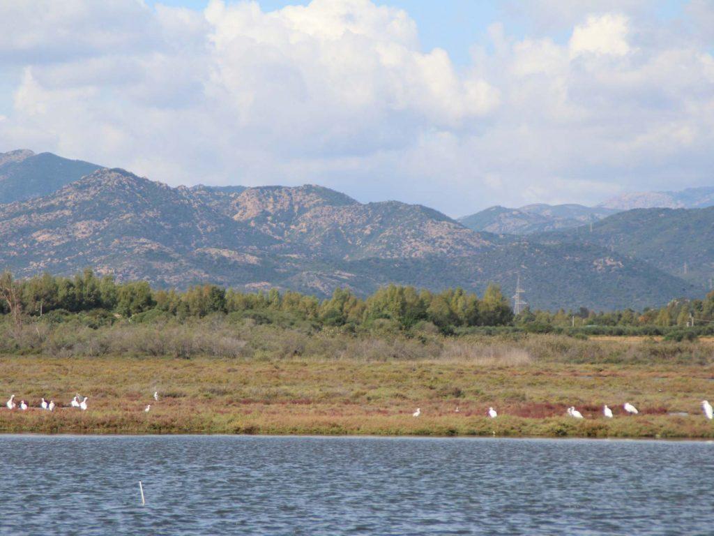 southsardinia-com-234